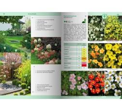 Rośliny do każdego ogrodu
