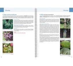 PRZEDSPRZEDAŻ! - Terminarz Oceny Zdrowotności Roślin 2021