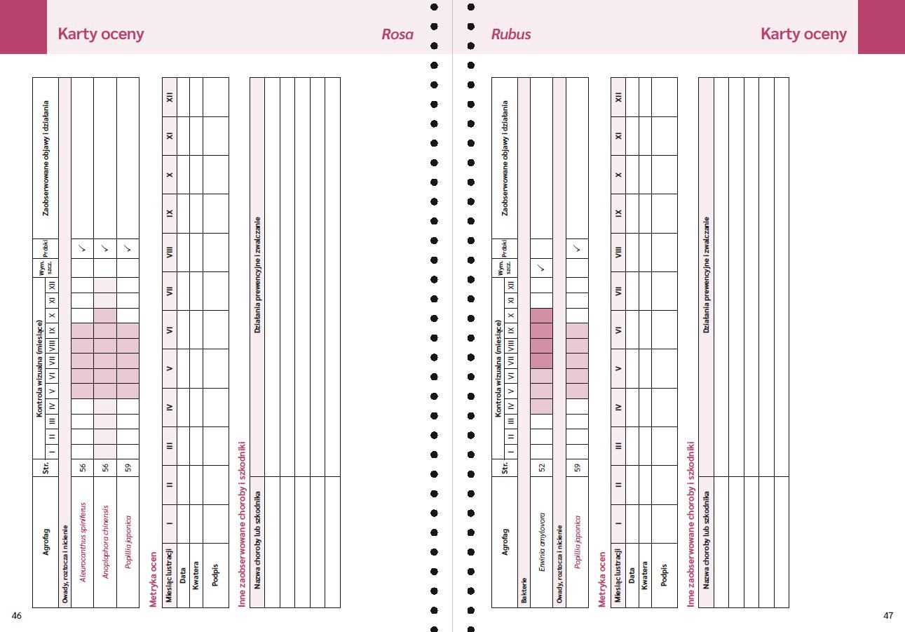 karta-oceny.jpg