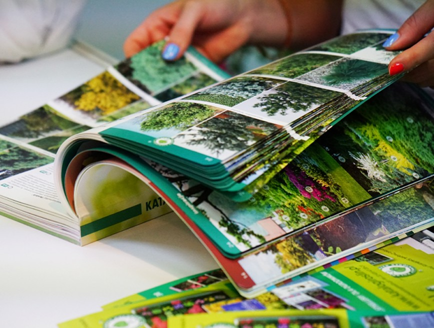Katalogi roślin