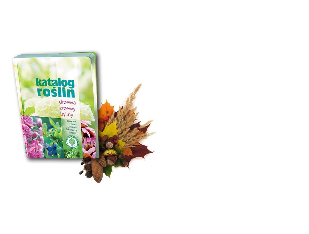Jesień z katalogiem roślin